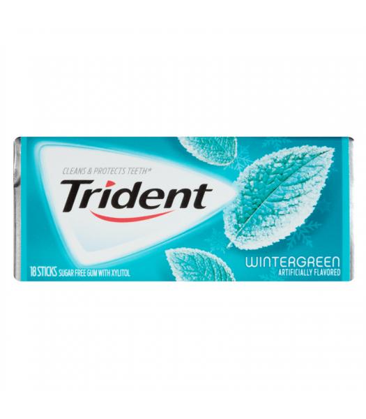 Trident Wintergreen Flavor Gum 18 Sticks Bubble Gum Trident